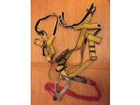 Big Ben Scaffolding safety harness and lanyard