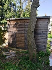 Wooden shed - 10ft by 10ft. Plenty of head room all round!