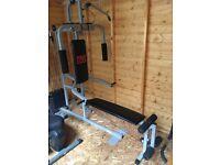 Pro Power Exercise gym £80.00 ONO