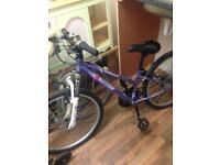 Large Girls Apollo Mountain Bike