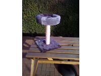 New cat tree \ bed COLLECTION ONLY BRAMLEY