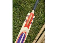 Gary-Nicholls Cricket Bat & Stumps Set