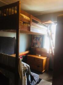 For sale single loft bed wood pine