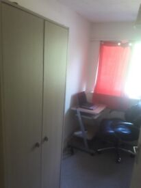 Single room for rent £280p/m