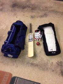 Cricket bat, leg pads, gloves, ball and bag