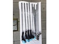 Wilson Stretch XL women' s Golf SET + Motocaddy Bag