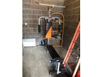 LGF-2 Herculean COBRA Home Gym