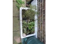 A vintage Belfast sink, for use as a garden planter