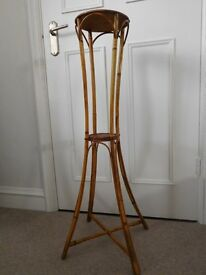 Cane display stands