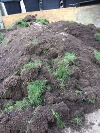 FREE top soil dirt FREE