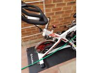 BH Fitness Indoor Cycle Bike