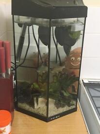 35L fish tank