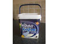 Dulux KidZone paint