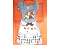 alice in wounded land fancy dress size 10