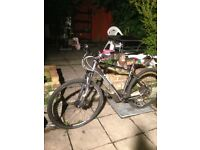 TREK MTB Hardtail 8.3 DS mountain bike not specialized, kona, carrera, mongoose, Apollo, norco