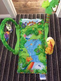 Baby Play mat. Mountsandle. Coleraine