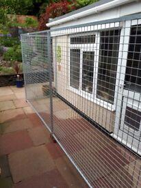 Galvanised mesh dog run Panels