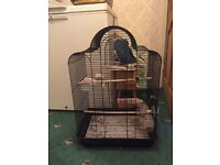 Bird cage £30