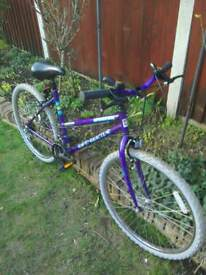 Ladies teenage girl bike collection near Norwich