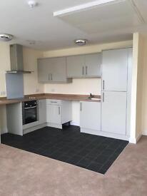 NEW LARGE 1 BEDROOM FLAT, CITY CENTRE, £550 pcm
