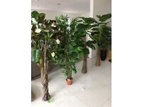 New artificial plants 5-6ft high