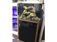 Aqua One 130 liter marine tropical cold water Fish tank Aquarium