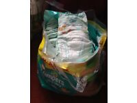 new bag of nappies pampers easy fit size 4 nappies x 79