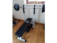 Bench Press with dip station, bar, spin collars and weights