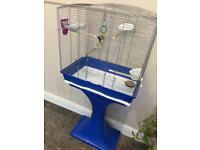 Baby Budgie with Bird cage, stand and supplies