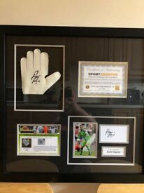 Asmir Begovic signed keepers glove in black frame