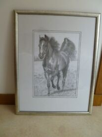 Framed Trotting Horse Drawing in Charcoal