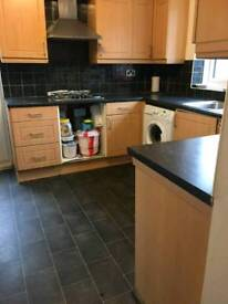 Cheap and single room in flat