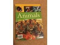 Animals enciclopedia