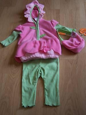 Infant Size 3-6 Months Baby Grand Daisy Flower Pink Green Halloween Costume - Daisy Baby Kostüm