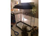 Fish tank Aquarium 25L with air pump, gravel, plants, filter etc.