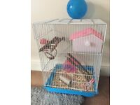 Hamster cage/Mouse Cage with ball, house and water bottle