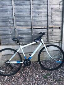 Challenge hybrid bike