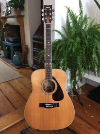 Yamaha FG-365s Acoustic Guitar 1979 Vintage Yamaha