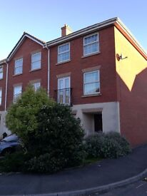 Room available, professional house-share, clean and friendly, with garden and garage.