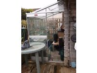 FREE 6'x4' LEAN-TO ALUMINIUM GREENHOUSE! North Somerset