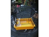 Canary carry cage