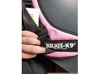 Julius K9 power harness size 0
