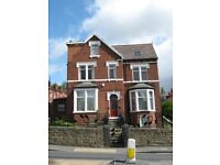 One large double room to rent in professional shared house with bills included in the rent!