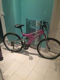 ladys trex bike