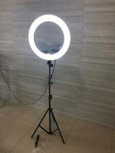 studio LED ring light round photography blogger stand adjustable mirror camera worm soft lighting Zeeba picture blogger