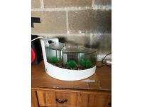 1.5 ft long small fish tank v g c with filter gravel nice ornament only look pic