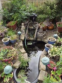 POND LINER WITH WATERFALL PUMP AND FILTER