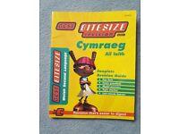 BBC GCSE bitesize revision Welsh Cymraeg