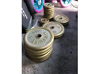 Weights 60+ kg