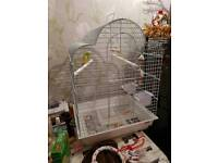 Large bird cage and budgie